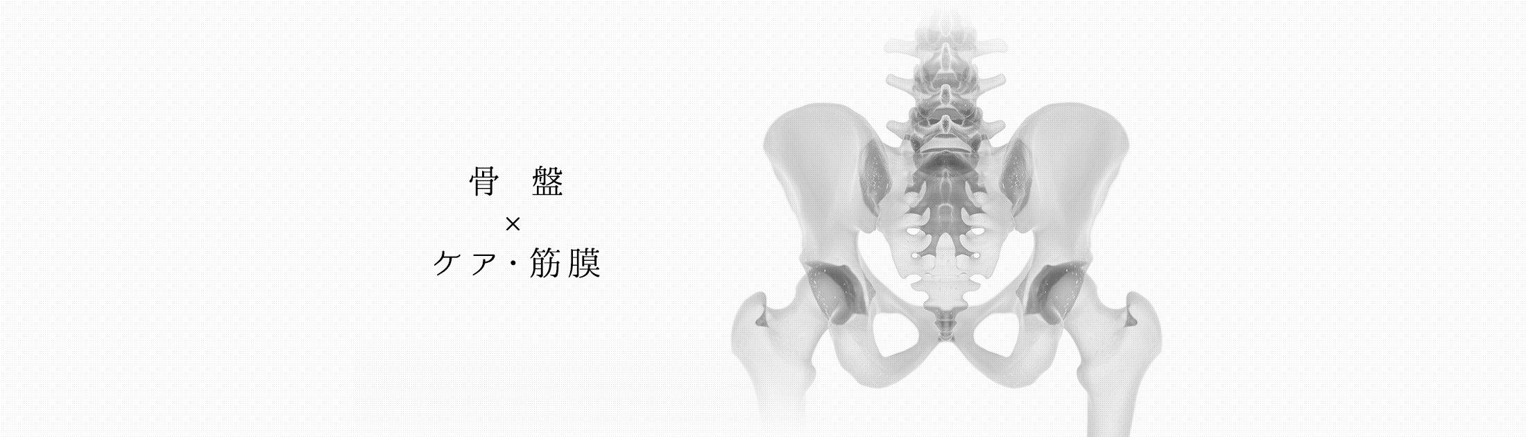 骨盤の調整ならb-i STYLEのb-i ペルヴィス